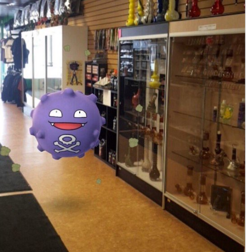 Coffing checking out Bong Stop's selection